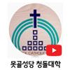 못골성당청돌대학.png