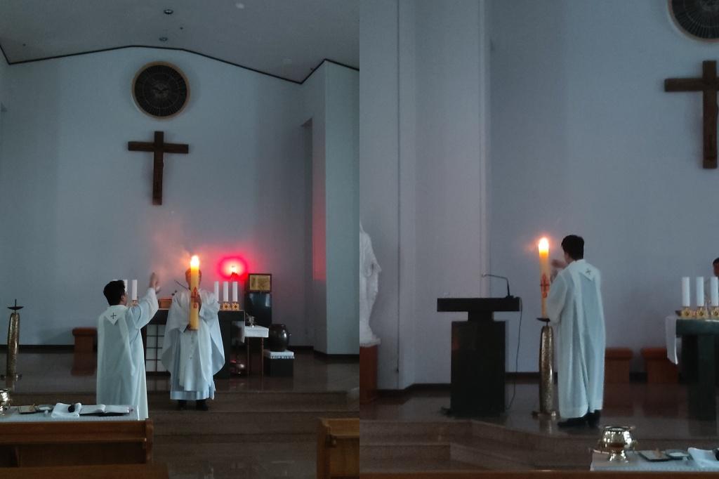 부활초2.jpg