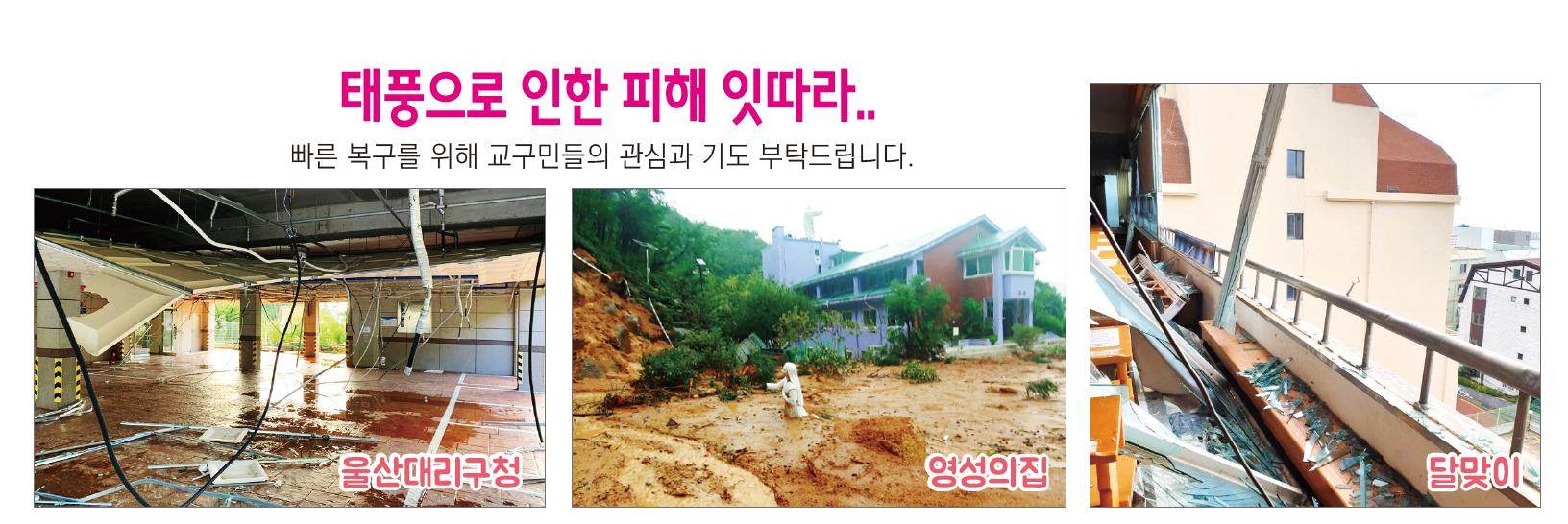 교구소식_인터넷주보.png
