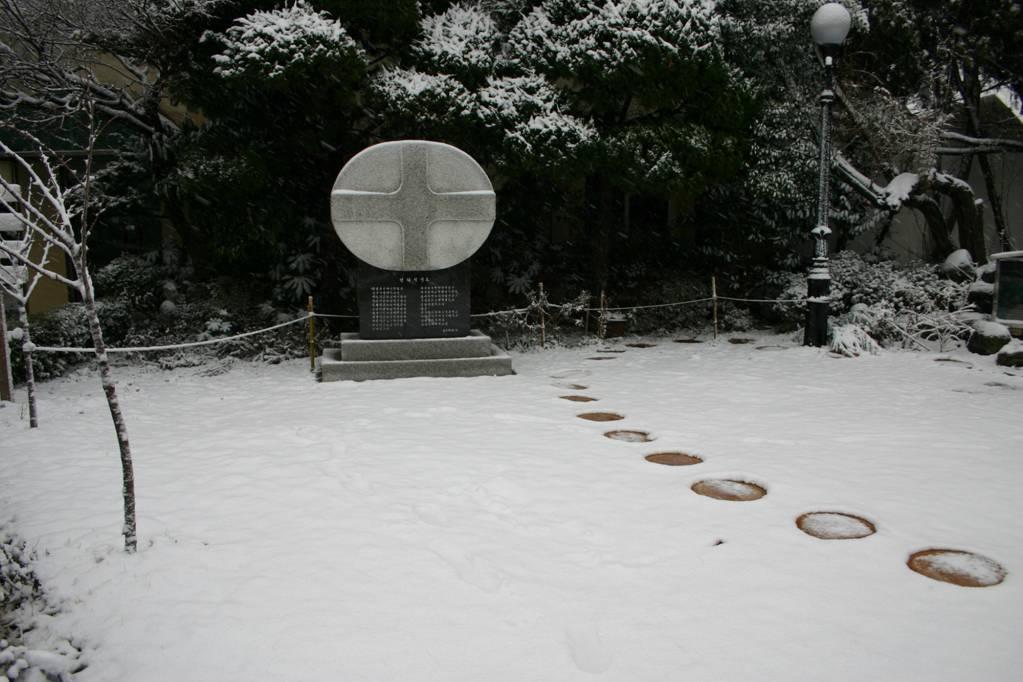 sn 611.jpg