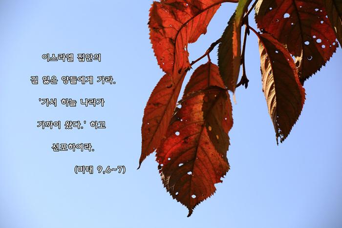 zIMG_0457-1.jpg