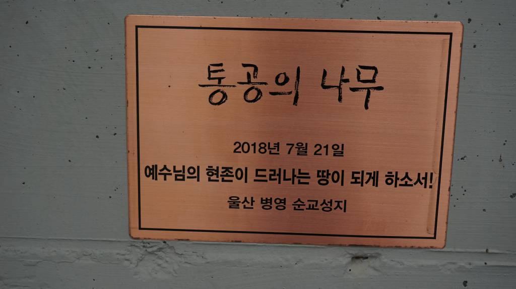 20180915울산대리구평신도희년도보성지순례056.JPG