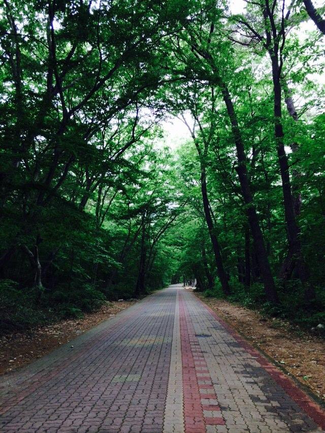 MyPhoto_1181746392_0010.jpeg
